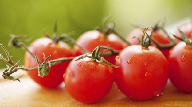 10番茄有益的益处:丰满的基本营养素